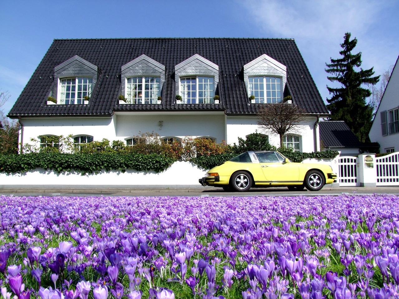 hedera bauwert: Die Eigentumsimmobilie erlebt eine Renaissance