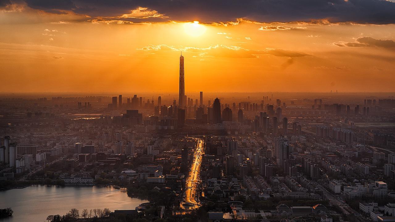 hedera bauwert - Urbanisierung